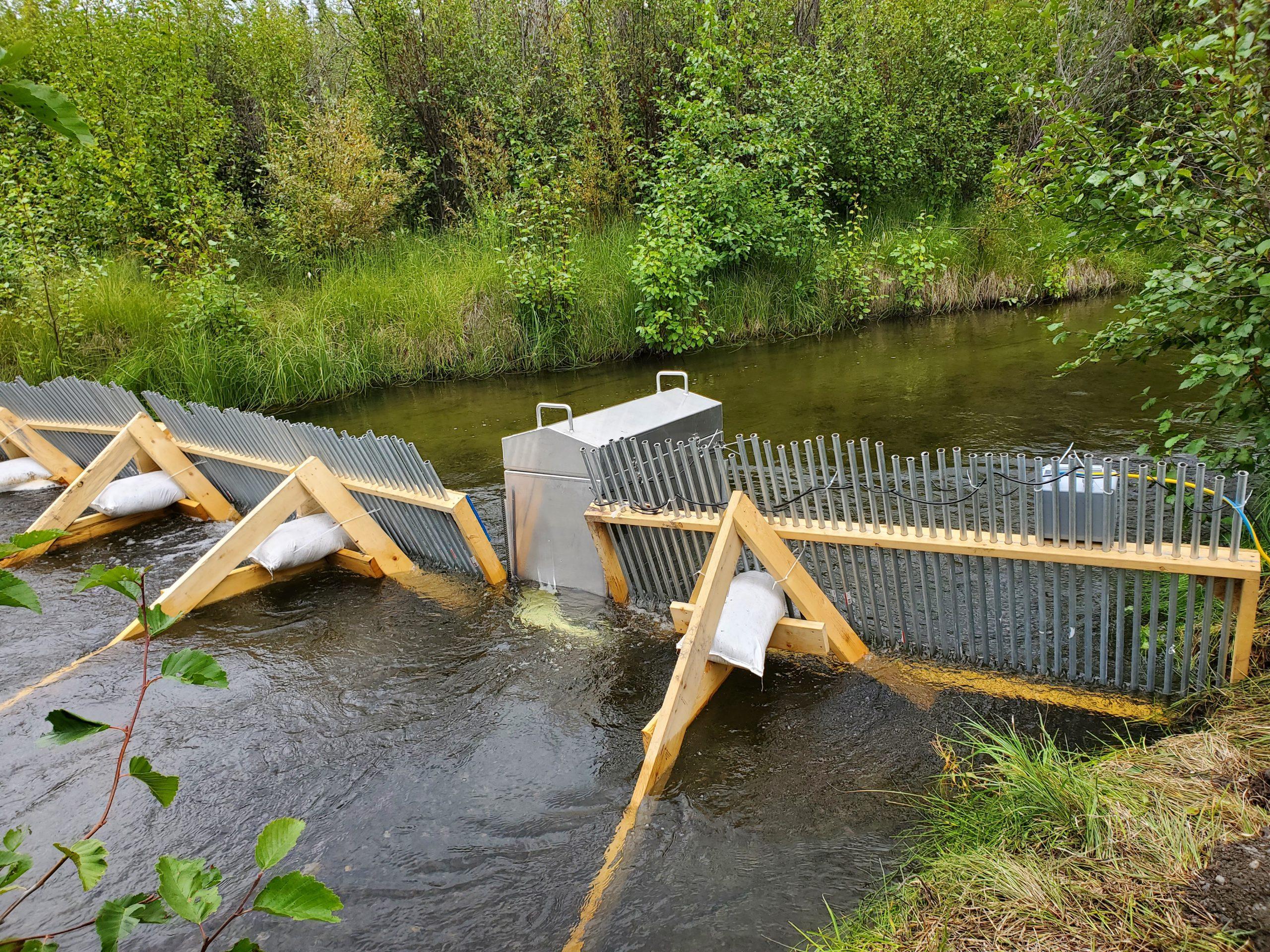 Fox Creek Video Weir